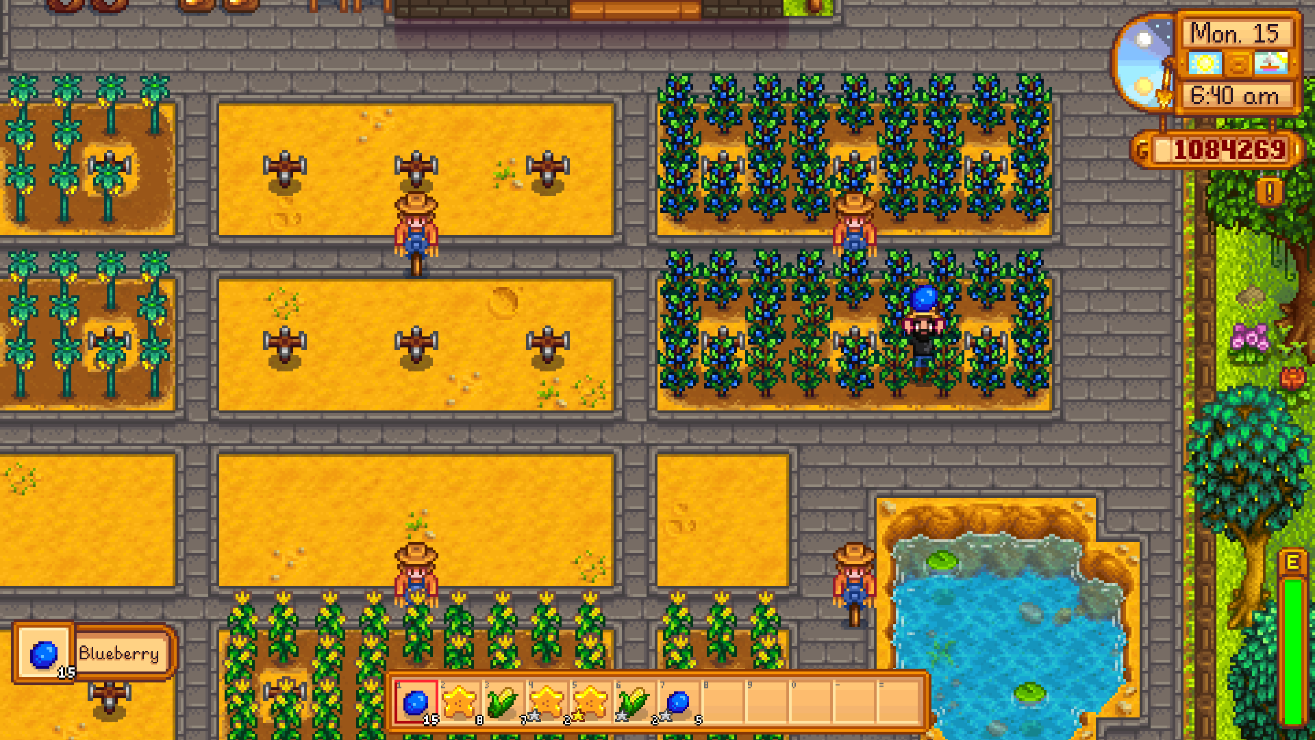 stardew valley best crops